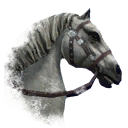 ON-icon-horse-White.png