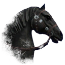 ON-icon-horse-Black.png