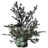 SR-icon-ingredient-Juniper Berries.png