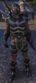 ON-costume-Naryu's Assassin's Armor.png